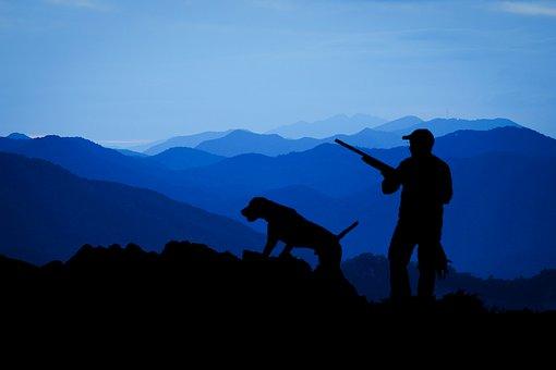 hunting-3145387__340